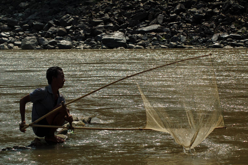 A local fishing in the Koshi river of Barahchhetra, Sunsari